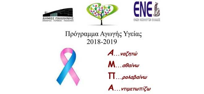 Ε.Ν.Ε. – Δήμος Παλλήνης