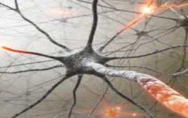 """Διαδικτυακή Ημερίδα: """"Αποκατάσταση ασθενών με νευρολογικά νοσήματα"""""""